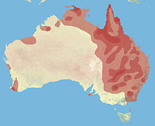 Distribution Of Feral Pigs In Australia