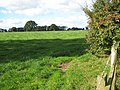 Field near Home Farm - geograph.org.uk - 575439.jpg