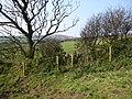 Field stile. - panoramio (3).jpg