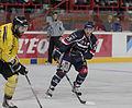 Finale de la coupe de France de Hockey sur glace 2014 - 068.jpg