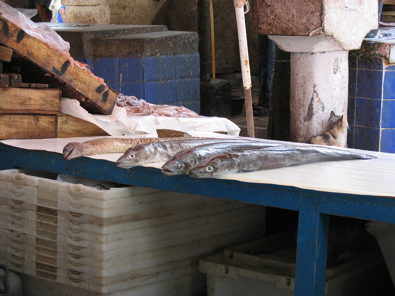 File Fish For Sale 2902052810 Jpg Wikimedia Commons