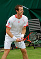 Flickr - Carine06 - Andy Murray (8).jpg