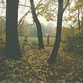 Flickr - Ion Chibzii - Park in village Tsaul (the North of Moldova). 80th years.jpg