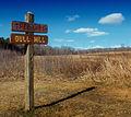 Flickr - Nicholas T - Bull Hill (2).jpg