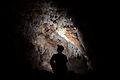 Flickr - ggallice - Bocas cave.jpg