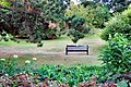 Flickr - ronsaunders47 - A QUIET SPOT IN VENTNOR BOTANICAL GARDENS..jpg