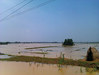 Balasore district - Balasore district is affected with flood in its coastal areas