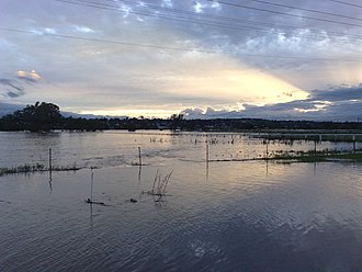 2010–11 Queensland floods - A flooded paddock in Warwick