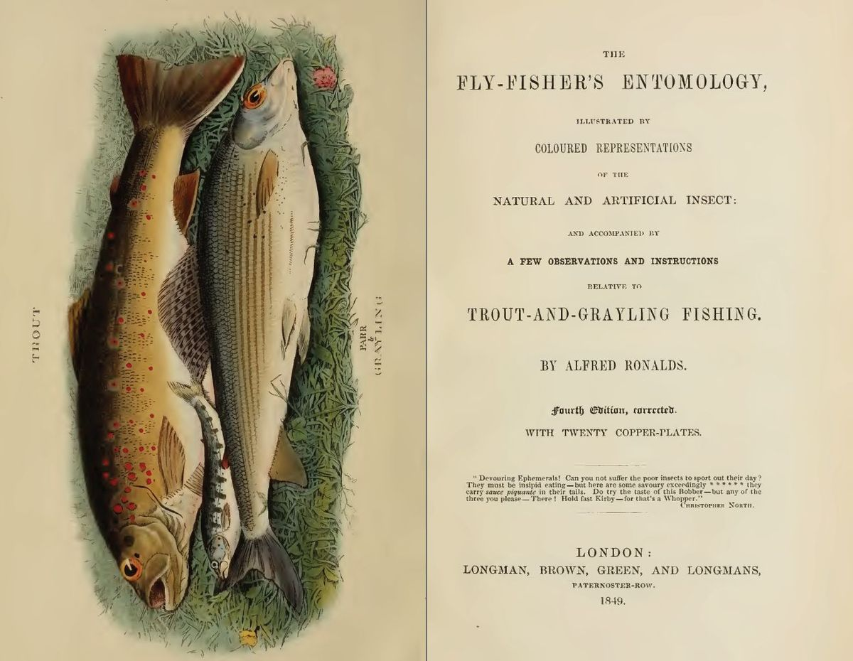 The fly fisher 39 s entomology wikipedia for What is fly fishing