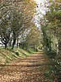 Following a dismantled railway trackbed - geograph.org.uk - 1053463.jpg