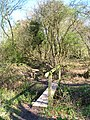 Footbridge near Horton Wood - geograph.org.uk - 757017.jpg