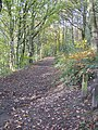 Footpath at Moss Valley Country Park - geograph.org.uk - 1038753.jpg