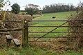 Footpath from Lower Westfields Farm to Harbury - geograph.org.uk - 1569875.jpg