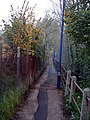 Footpath in Bagshot - geograph.org.uk - 210737.jpg