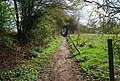 Footpath north of Chiddingstone (2) - geograph.org.uk - 1262550.jpg