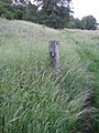 Footpath post near Park Bottom, Sherrington - geograph.org.uk - 472571.jpg