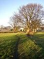 Footpath to Boothroyd, Rastrick - geograph.org.uk - 632060.jpg