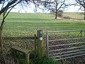 Footpath to Hollybeds Farm - geograph.org.uk - 762116.jpg