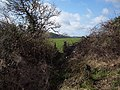 Footpath to the Old Shaston Drove from the A30 - geograph.org.uk - 360685.jpg