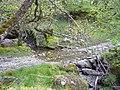 Ford across a tributary of the Glenstockdale Burn - geograph.org.uk - 447528.jpg