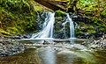 Forked waterfall (Unsplash).jpg