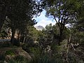 Fornalutx, Balearic Islands, Spain - panoramio (4).jpg