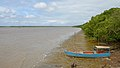 French Guiana Rivers Cayenne and Montsinéry estuary 2013.jpg