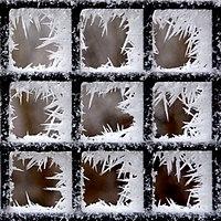 Frost (31189250653).jpg