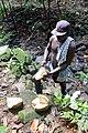 Fruit de jacquier à São Tomé.jpg