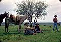 Gauchos-alegrete-1969.jpg