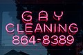 Gay Cleaning (2962182773).jpg