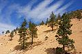 Geiger Grade, Virginia City, Nevada (22692303724).jpg