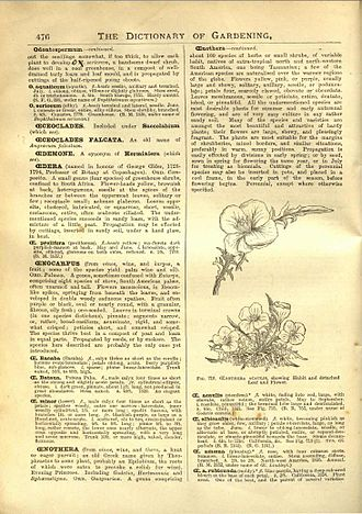 """George Nicholson (horticulturist) - Page from """"The Illustrated Dictionary of Gardening"""""""