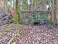 Gesprengter Bunker im Beckinger Wald 7.jpg