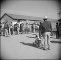Gila River Relocation Center, Rivers, Arizona. A view of part of the crowd that witnessed the Harve . . . - NARA - 538663.tif