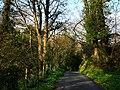 Glen Maye - geograph.org.uk - 773015.jpg