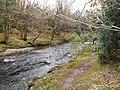 Glenmacnass River - geograph.org.uk - 1658926.jpg