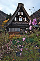 Gokayama, World Heritage Site – Japan (4122839613).jpg