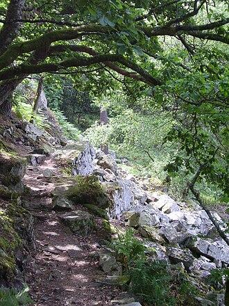 Normandie-Maine Regional Natural Park - Trail in Gorges de Villiers