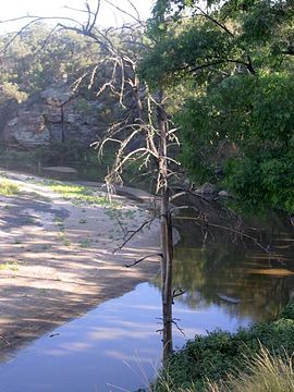 Goulburn River at Goulburn River Natiional Park.JPG