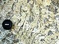 Graphic granite (runite) (Ruggles Pegmatite, New Hampshire Plutonic Series, Devonian; Ruggles Pegmatite Mine, western New Hampshire, USA) (14815960350).jpg