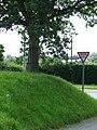 Grass bank - geograph.org.uk - 891310.jpg