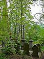 Graveyard of the Unitarian Church, Todmorden (2511011973).jpg