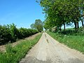Green Lane, Helperthorpe - geograph.org.uk - 1334076.jpg