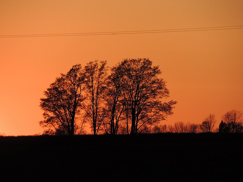 File:Grey County Sunset (34523868612).jpg
