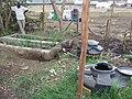 Greywater treatment system (4666056058).jpg