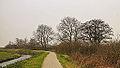 Groep bomen aan fietspad om Langweerderwielen (Langwarder Wielen). Oostkant 02.jpg