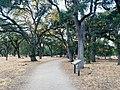 Guadalupe Oak Grove Park, Almaden Valley.jpg