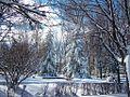 Guardo nevado - panoramio - Alejandro Polanco.jpg