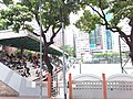 HK train view 灣仔 Wan Chai 莊士敦道 Johnston Road July 2019 SSG 12.jpg